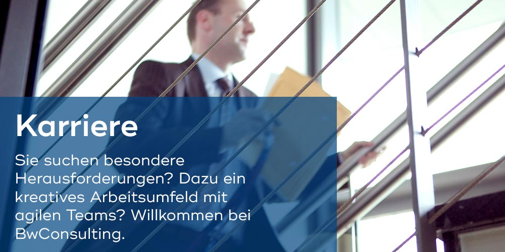 BwConsulting, Karriere